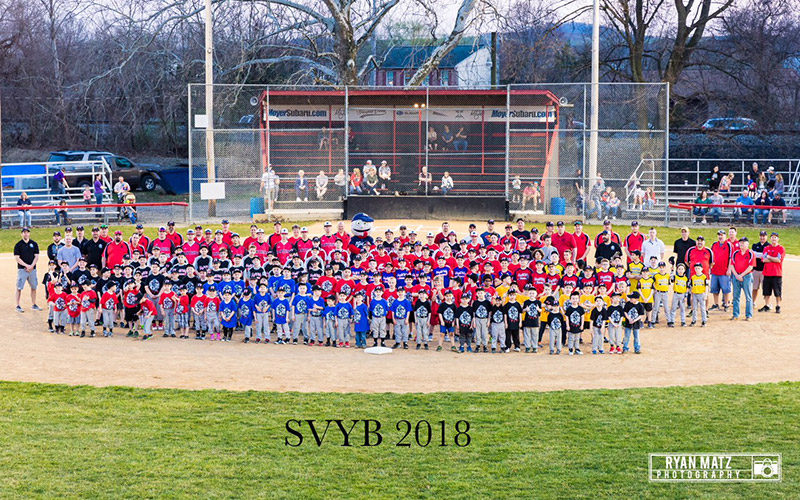 schuylkill valley little league